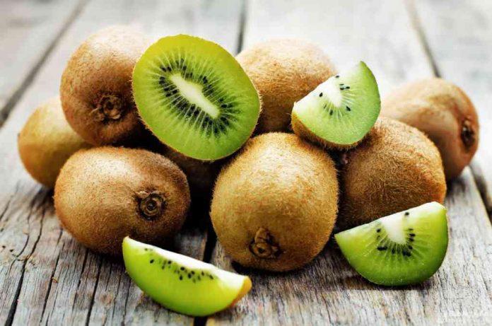 Đặc điểm kiwi