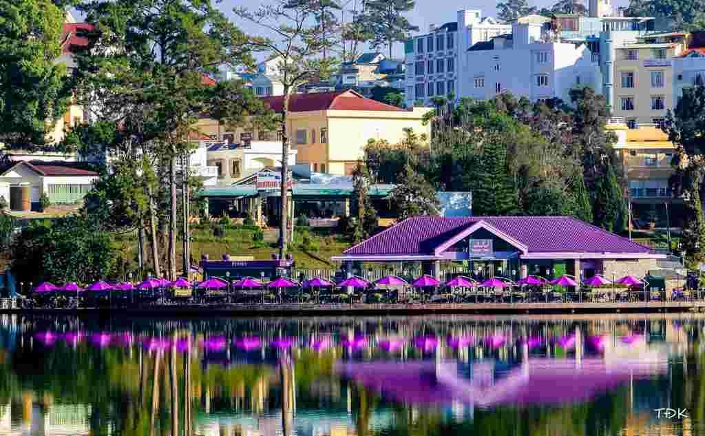 Sắc tím nổi bật góc bờ hồ Xuân Hương