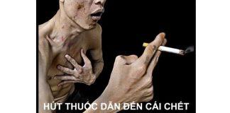 nghị luận về tác hại của thuốc lá